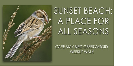 Sunset Beach: A Place for All Seasons tickets
