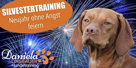 Silvestertraining - Neujahr ohne Angst feiern! 4-teiliger Workshop! Tickets