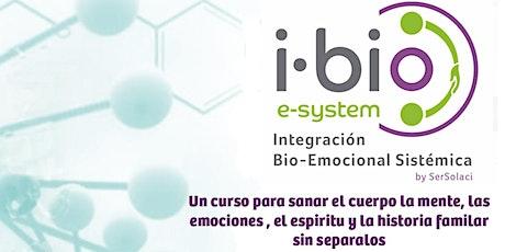 CURSO DE FORMACIÓN EN INTEGRACION BIO-EMOCIONAL SISTEMICA (I Bio-E System) entradas
