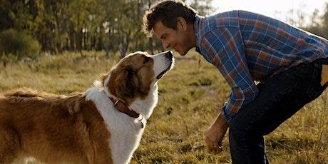 Kambri Film Fest | A Dog's Journey tickets