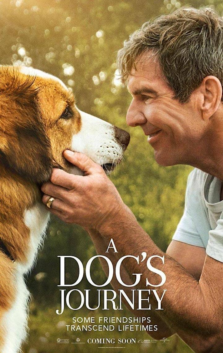 Kambri Film Fest | A Dog's Journey image