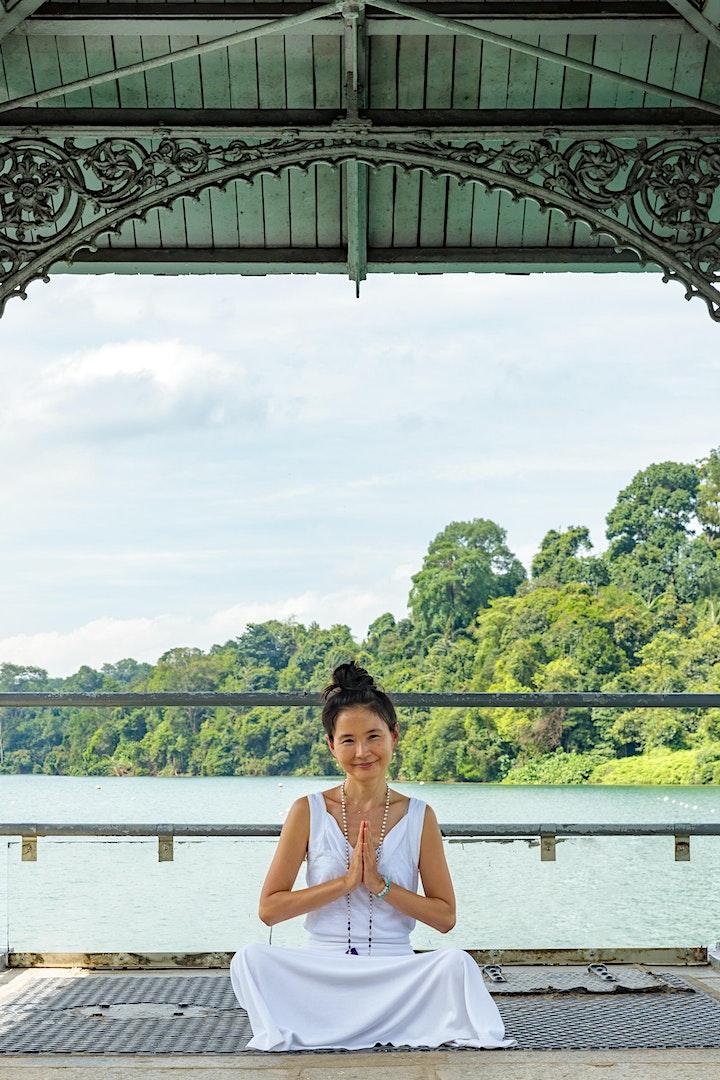Energy Healing: Movement + Reiki + Crystals with Sita Pavan image