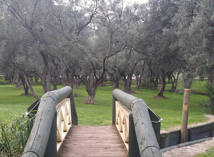 Guided Walk through Victoria Park / Pakapakanthi (Park 16) image