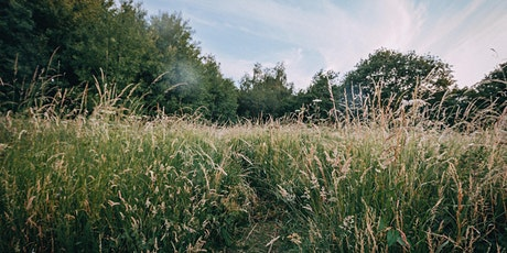 Introduction to Mowing with a Scythe (2 sessions) tickets