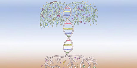 Harnessing the Plant Microbiome tickets