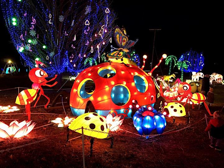 CG Festival of Lights image