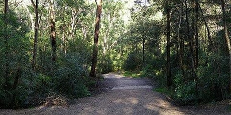 Bush Walk Series- Blackbutt Creek tickets
