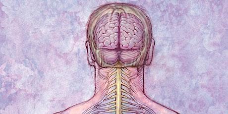Robin Kerr presents: Dermo Neuro Modulation [QLD] 14PDP tickets