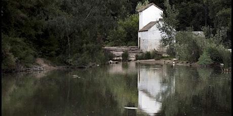 Visita a los  molinos de Alcalá bajo entradas