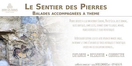 Le Sentier des Pierres - Balade accompagnée à thème billets