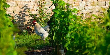 Pressoir.wine presents: THIRST for biodynamic practices tickets