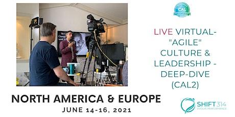 "ONLINE Live Virtual ""Agile"" Culture & Leadership - Deep-dive (CAL2) tickets"