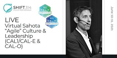 """ONLINE Live Sahota """"Agile"""" Culture & Leadership (CAL1/CAL-E and CAL-O) tickets"""