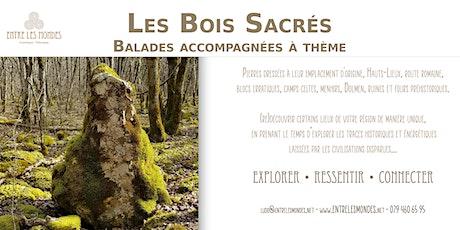 Les Bois Sacrés - Balade accompagnée à thème billets