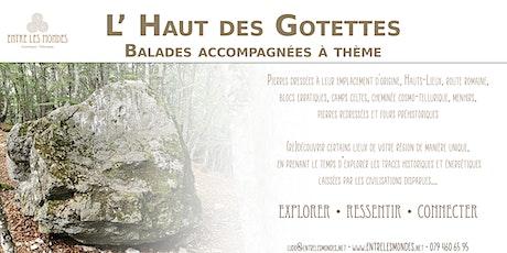 L' Haut des Gotettes - Balade accompagnée à thème tickets
