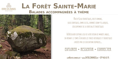 Les Bois Sainte-Marie – Cuarnens