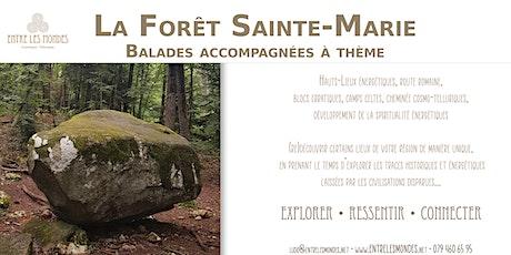 Les Bois Sainte-Marie - Cuarnens billets