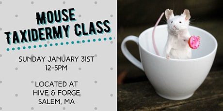 Mouse Taxidermy Class tickets