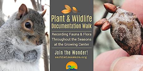 Plant & Wildlife Documentation Walk tickets