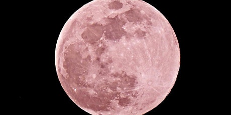 Pink Full Moon Night Kayak and Paddle tickets