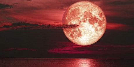 Strawberry Full Moon Night Kayak and Paddle tickets