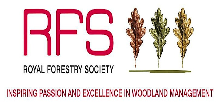 Woodland archaeology: banks and pits! - RFS one day training course image