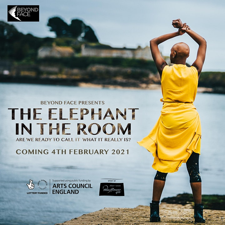 The Elephant in the Room image