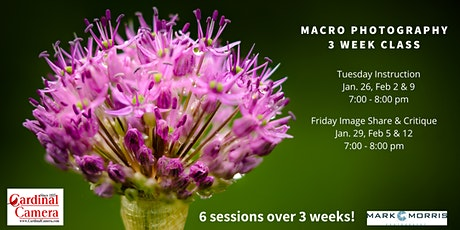 Macro Photography Online Class with Mark Morris tickets
