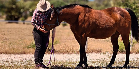 Horse and human psychology workshop tickets