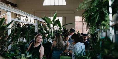 Canberra - Huge Indoor Plant Warehouse Sale - Summertime Madness tickets