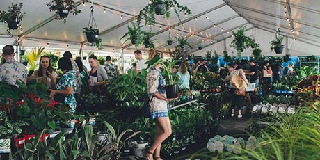 Brisbane - Huge Indoor Plant Warehouse Sale - Summertime Madness tickets