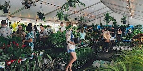 Brisbane - Huge Indoor Plant Warehouse Sale - Summertime Madness tickets