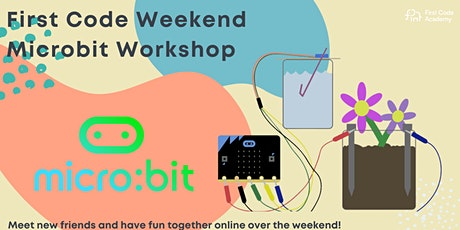 Online Microbit Workshop tickets