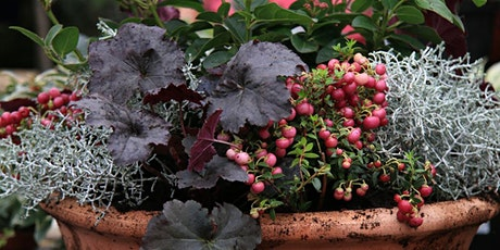 Autumn Winter Container Workshop With Jacky and Peter Richardson tickets