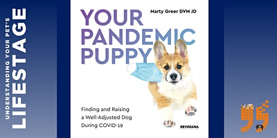 Caring for Your Pandemic Puppy!