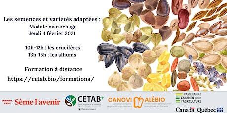 Formation sur les semences et variétés adaptées : module maraîchage tickets