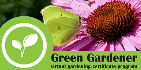 Green Gardener: Virtual Gardening Certificate Program [10 Session Series] tickets