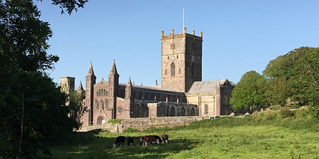 St Davids - One Day Pilgrimage tickets