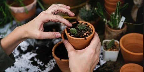 Free Beginners Workshop  to Happy House Plants: How to Care for Indoor Plan tickets