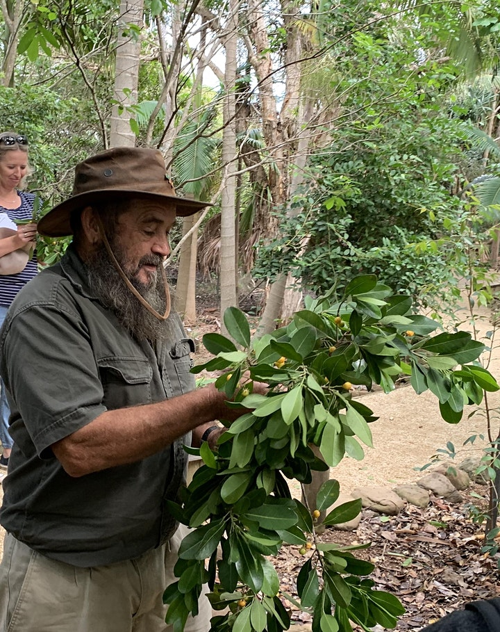 Connecting to Country;Discovering local Aboriginal culture with Uncle Franc image