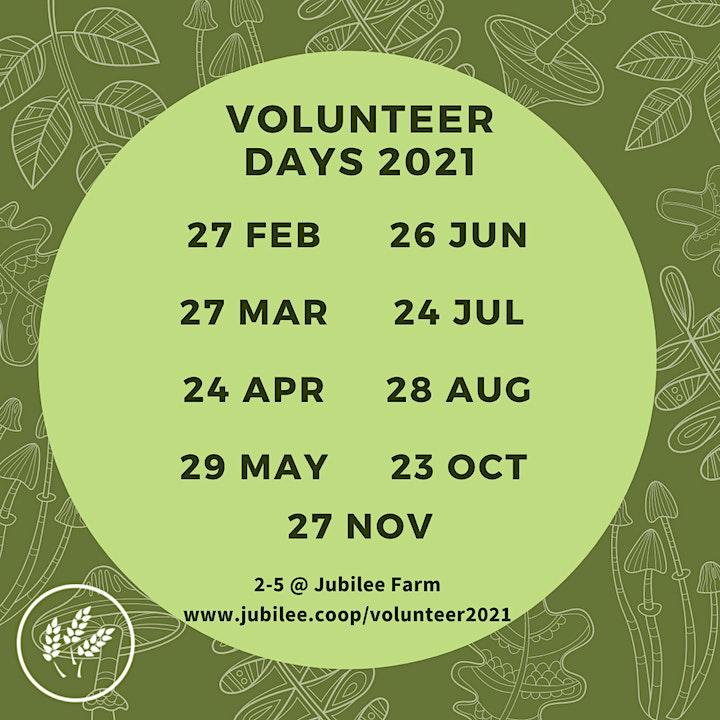 Community Volunteer Days 2021 image