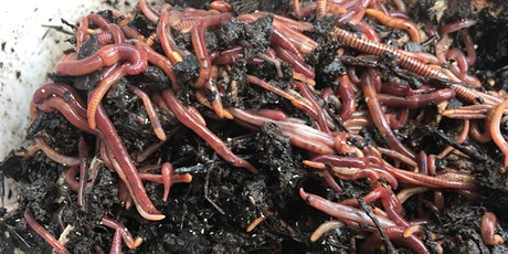 FREE Workshop: Worm Composting tickets