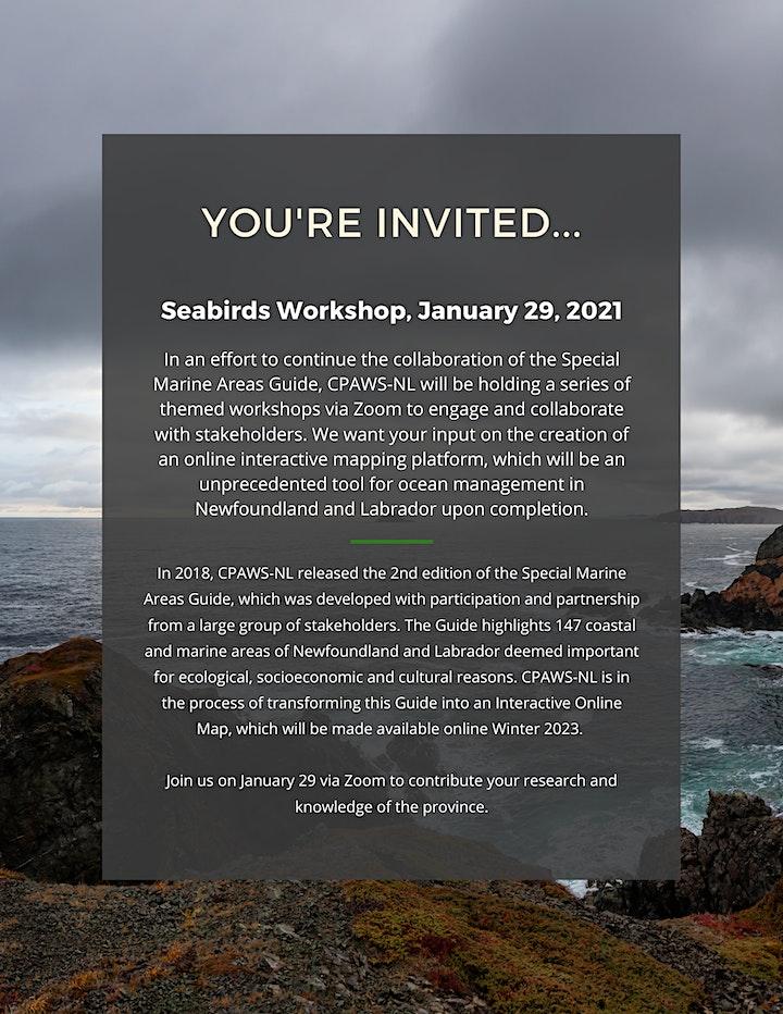 SMA Interactive Workshop Series - Seabirds (January 29, 2021) image