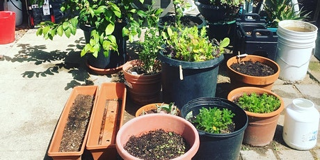 Big Gardens in Small Spaces: The adventures of container gardening tickets