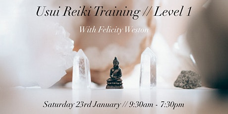 Usui Reiki: Level 1 Training Course tickets