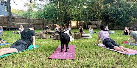 Summerville Goat Yoga at Flowertown Charm Mini-Farm tickets