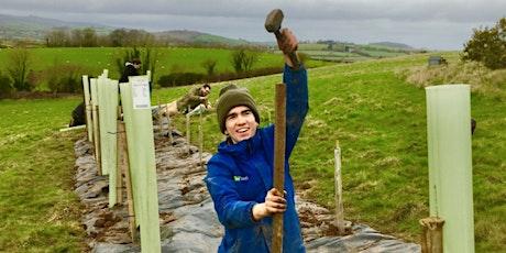 Tree Planting Volunteer Day: Mill Leat Holistic Farm. tickets