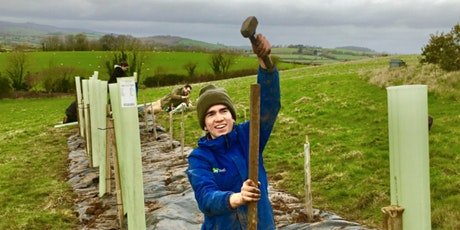 Tree Planting Volunteer Day: Little Barton, Littlehempston. tickets