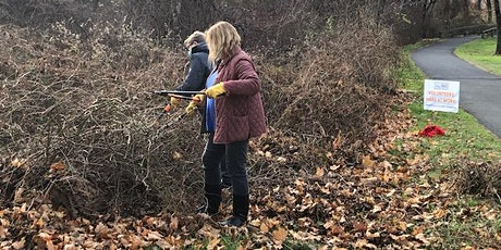 Invasive Plant Removal on the Bronx River Reservation tickets