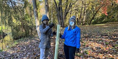 Tree Tube Repairs and Vine Cutting at Tibbetts Brook Park tickets